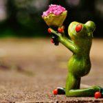 ばらの花には意味がある!?本数、色、贈る相手によって気を使って